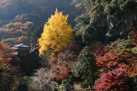 行道山 浄因寺