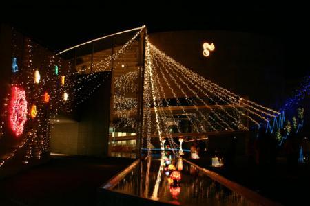 那須野が原ハーモニーホールの電飾
