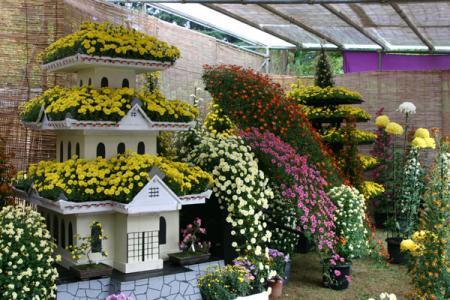 県中央公園の菊花展