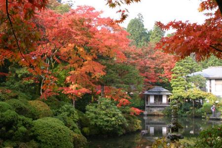 逍遥園の紅葉