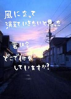image754921.jpg
