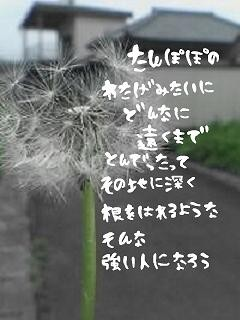 image8078711.jpg