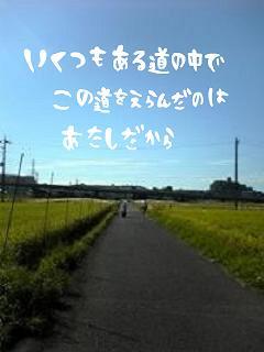 image9908154.jpg
