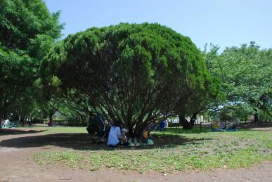 20070526_001.jpg