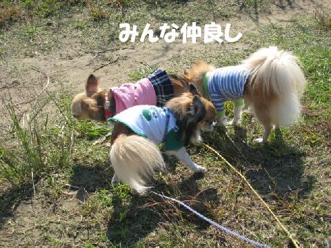 IMG_0584-1.jpg