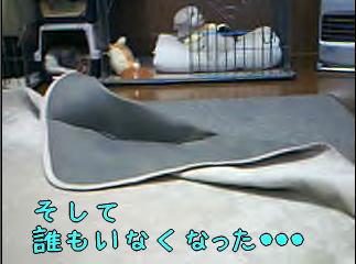 20070125_4.jpg