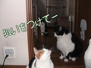 20070127_6.jpg