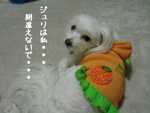20070320_5.jpg