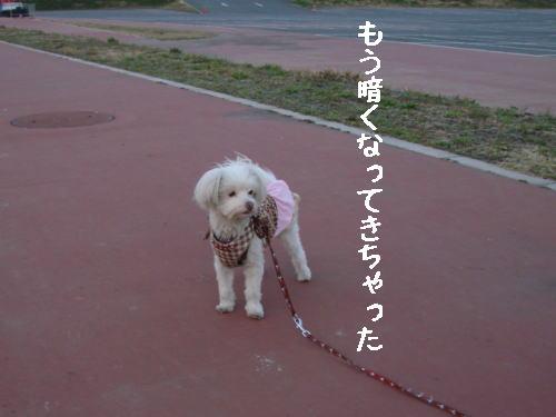 20070321_9.jpg