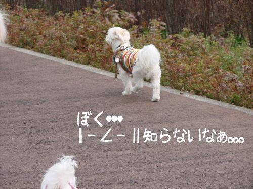 20070324_13.jpg