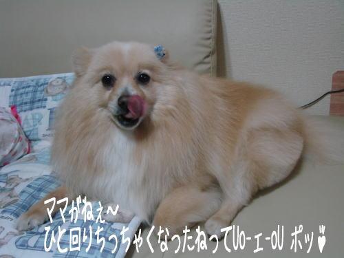 20070512_2.jpg
