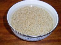 玄米発芽中…