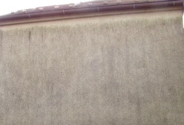 外壁北面のカビ