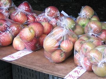 りんご園-B
