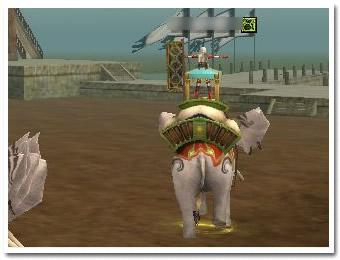 象の上でタイタニックチャレンジ実施中!