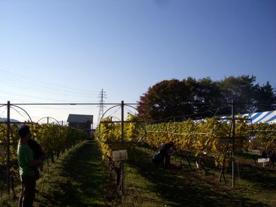 20071028ワイン1