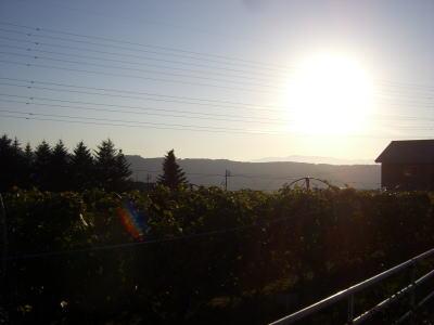 20071028ワイン3