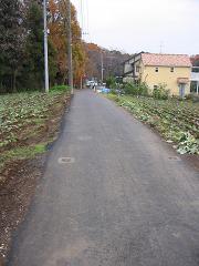 20061221113048.jpg