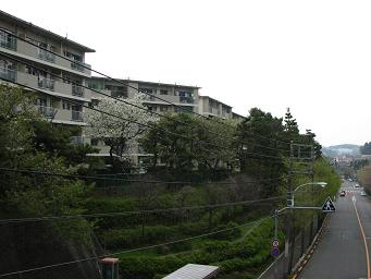 「藤野台東」バス停付近。