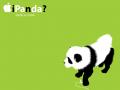 偽造パンダ (中国産)