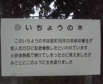 20070603simabaragakkou4