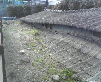 20070603simabarasaigai2
