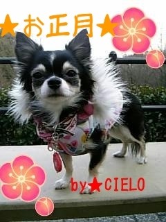 CIELO-1.jpg