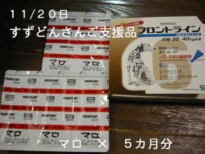 20061120215835.jpg
