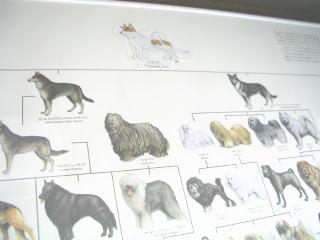 2007-7-6-2.jpg