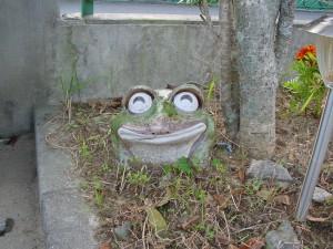 無事カエル