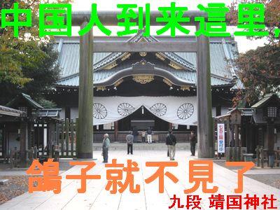 中国人到来這里,鴿子就不見了 九段靖国神社