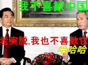 我不喜歓中国 老実説 我也