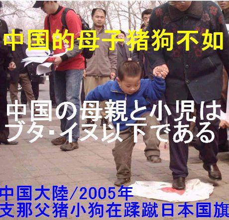 中国的母子猪狗不如 460