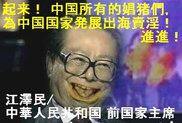 起来 中国所有的娼猪們