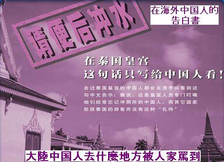 在海外中国人的告白書