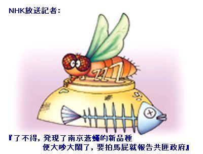 NHK放送記者:了不得 発現了南京蒼蠅的新品種便