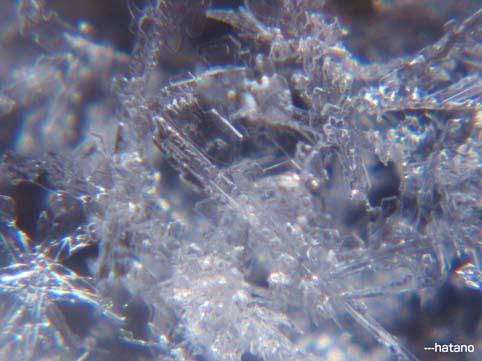雪の結晶+ミクロスコープ