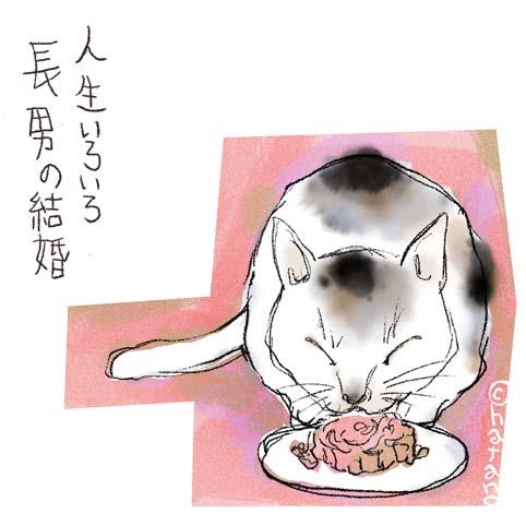 久しぶりにネコのイラスト描きました