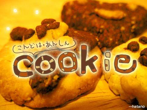 こんどは成功cookie!