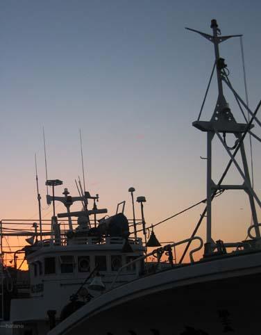 増毛港の夕暮れ