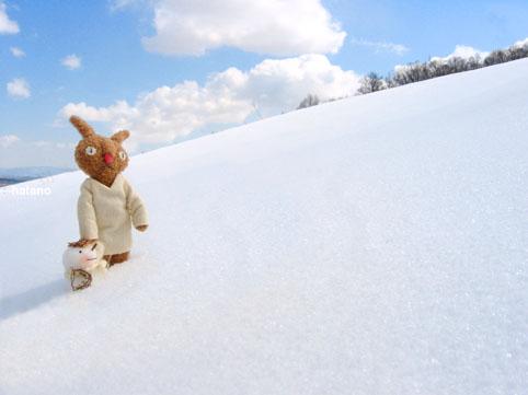 爽やか雪のはら