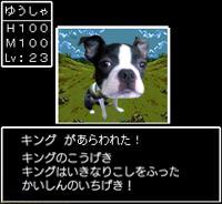 20061216185548.jpg