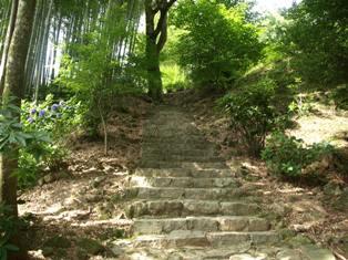 滝への道1