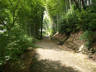 滝への道2