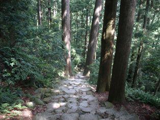 滝への道3