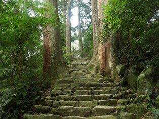 滝への道4