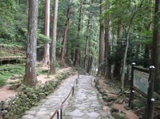 滝への道8