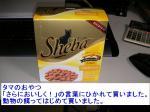 20060530_tama2.jpg