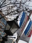街頭が神戸の町に・・