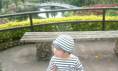 東南植物楽園4